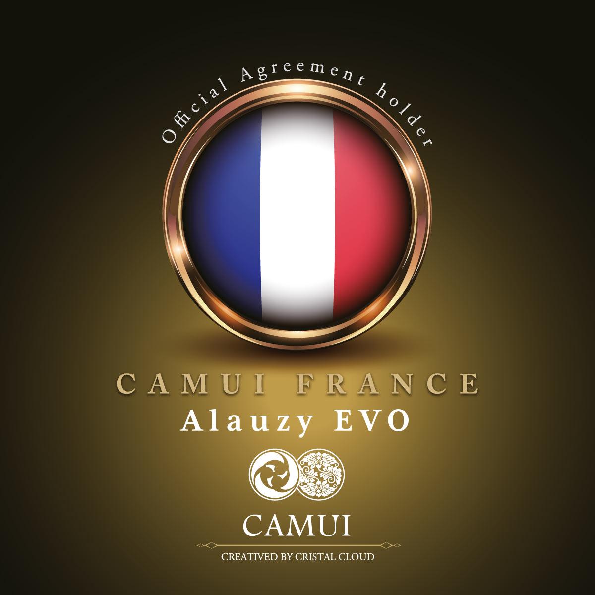 Logo CAMUI FRANCE